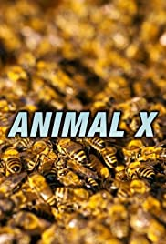 Animal X - Season 1 Episode 6