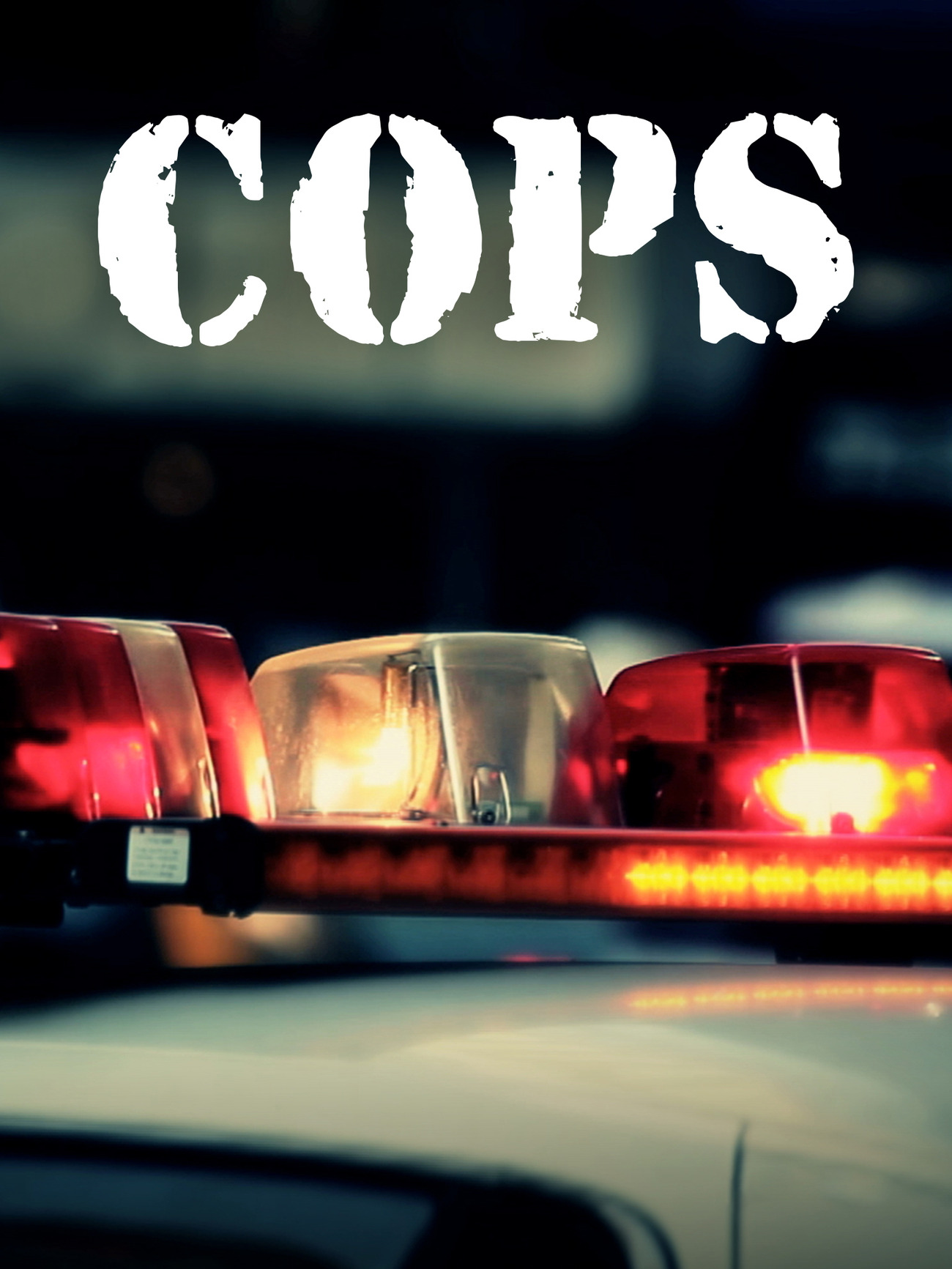 Cops - Season 31 Episode 33 - Spinning Out