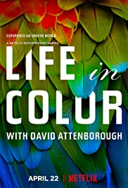 Life in Colour - Season 1 Episode 3