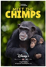 Meet the Chimps - Season 1 Episode 1 - Welcome to Chimp Haven