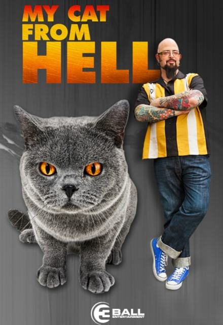 My Cat from Hell - Season 10 Episode 8 - Baby the Bully