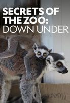 Secrets of the Zoo: Down Under - Season 1 Episode 6 - 103 Year Old Tortoise