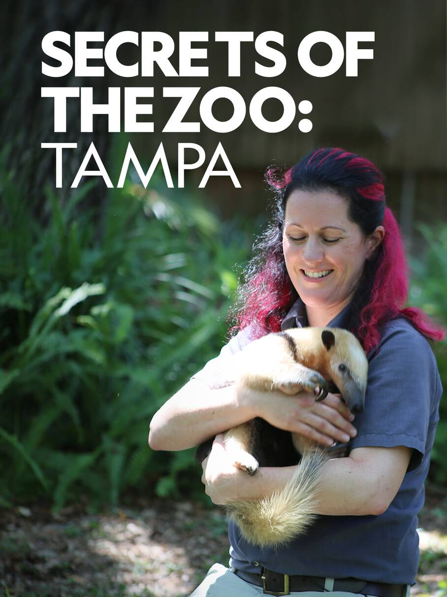 Secrets of the Zoo: Tampa - Season 2 Episode 4 - Iguana Be Your Friend  Track this S