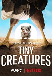 Tiny Creatures - Season 1 Episode 8