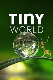 Tiny World - Season 1 Episode 6 - Garden